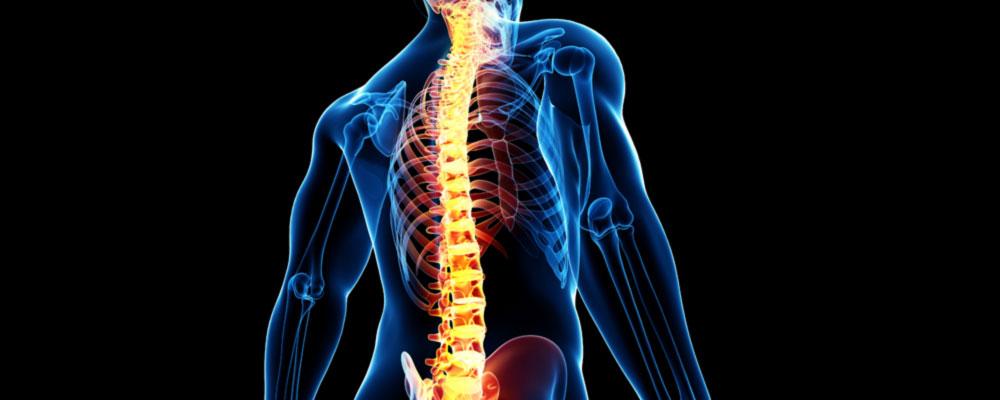 Dr. Leonardo Miguez | Tumores da Medula